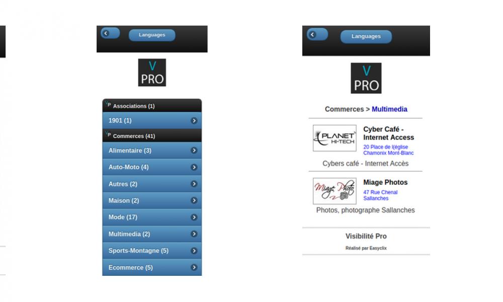 Première version Mobile de Visibilité Pro